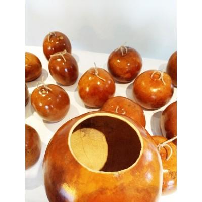 Calabash for berimbau