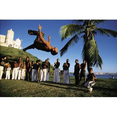 Livre Capoeira, Danse de Combat